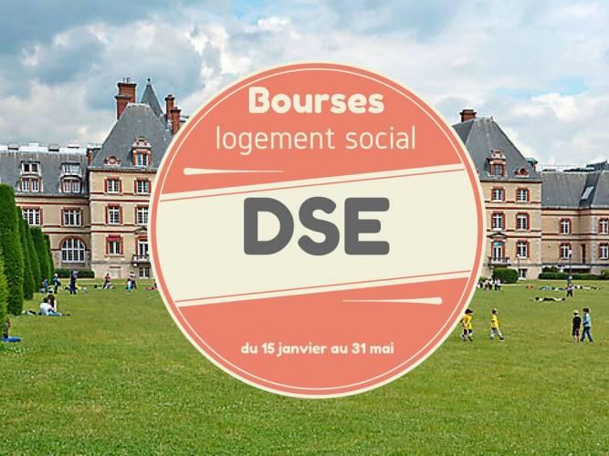 DSE (1).jpg