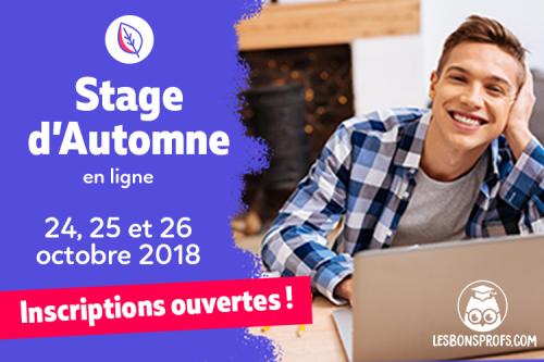 stage en ligne Les Bons Profs