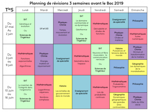 Programme-revision-TS.png