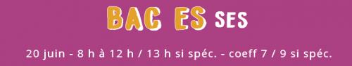 Bac ES SES.png