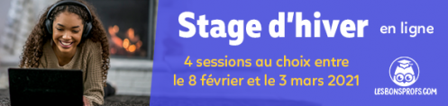 stage-hiver-2021-NL.png