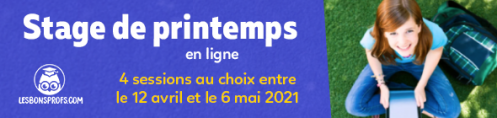 stage-printemps-2021-NL.png