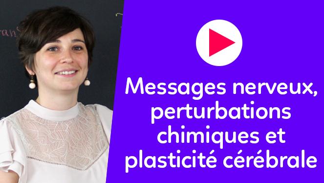 Messages nerveux, perturbations chimiques et plasticité cérébrale