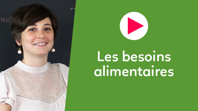 Les besoins alimentaires