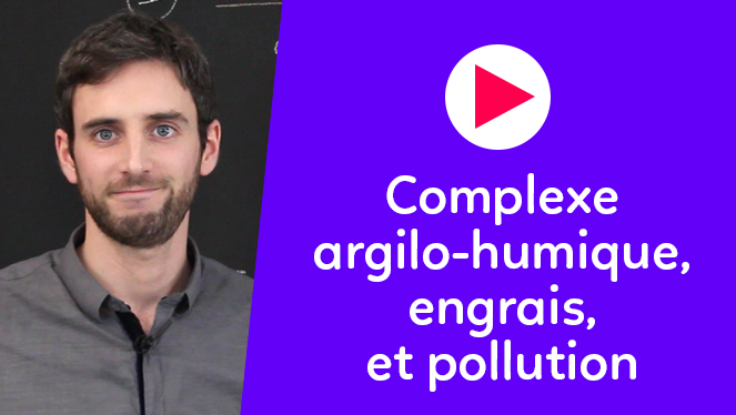 Complexe argilo-humique, engrais, et pollution