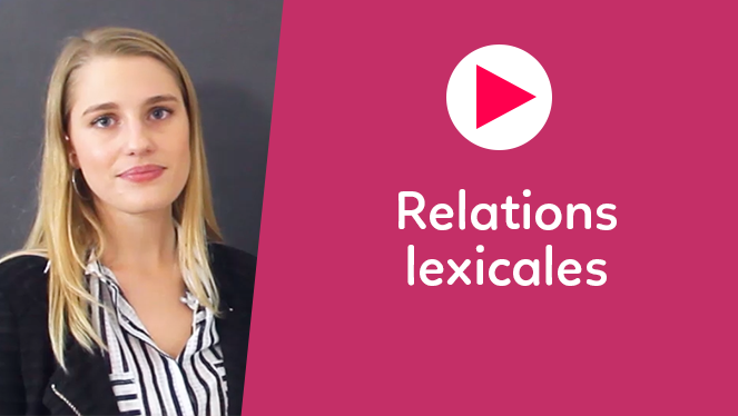 Relations lexicales