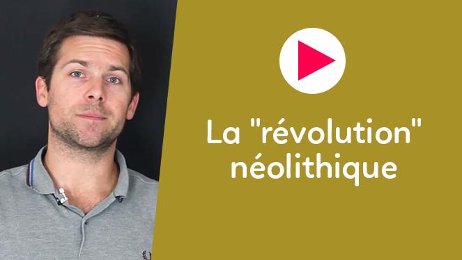 """La """"révolution"""" néolithique"""
