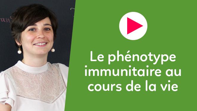 Le phénotype immunitaire au cours de la vie