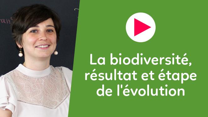 La biodiversité, résultat et étape de l'évolution