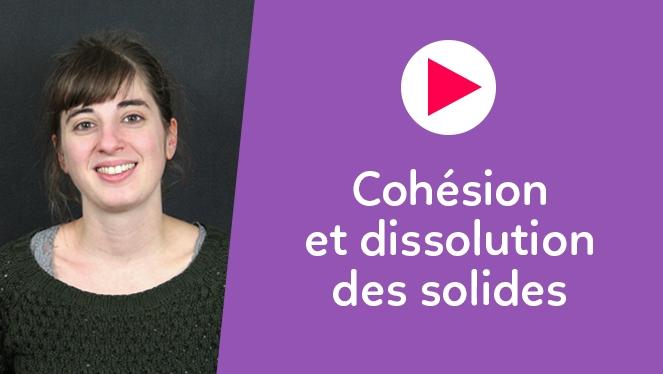 Cohésion et dissolution des solides