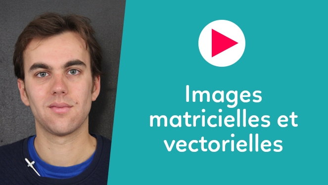 Images matricielles et vectorielles