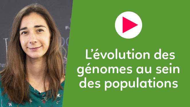 L'évolution des génomes au sein des populations