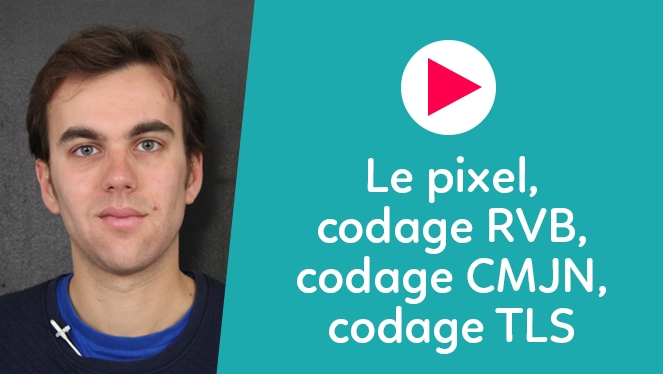 Le pixel, le codage RVB, le codage CMJN, le codage TLS