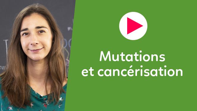 Mutations et cancérisation