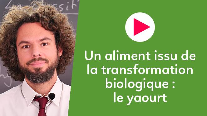 Un aliment issu de la transformation biologique : le yaourt