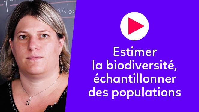 Estimer la biodiversité, échantillonner des populations
