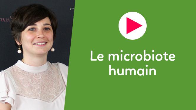 Le microbiote humain
