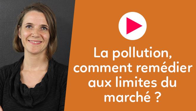 La pollution, comment remédier aux limites du marché ?