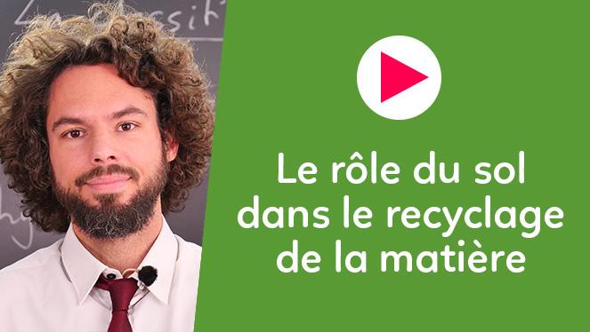 Le rôle du sol dans le recyclage de la matière