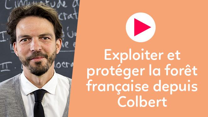 Exploiter et protéger la forêt française depuis Colbert