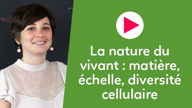 La nature du vivant : matière, échelle, diversité cellulaire