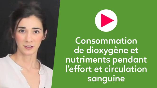 Consommation de dioxygène et nutriments pendant l'effort et circulation sanguine