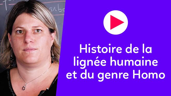 Histoire de la lignée humaine et du genre Homo
