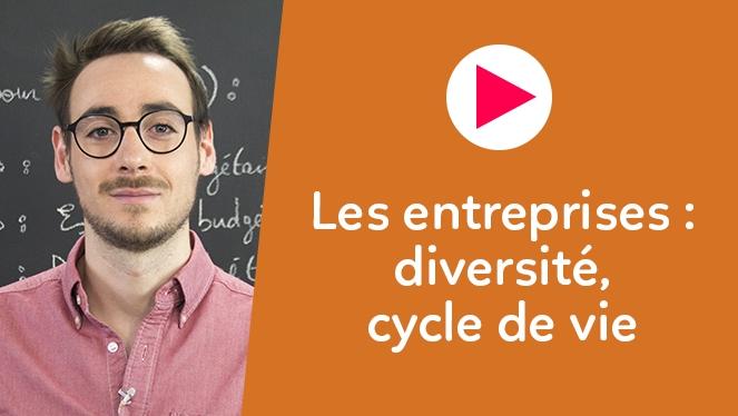 Les entreprises : diversité, cycle de vie