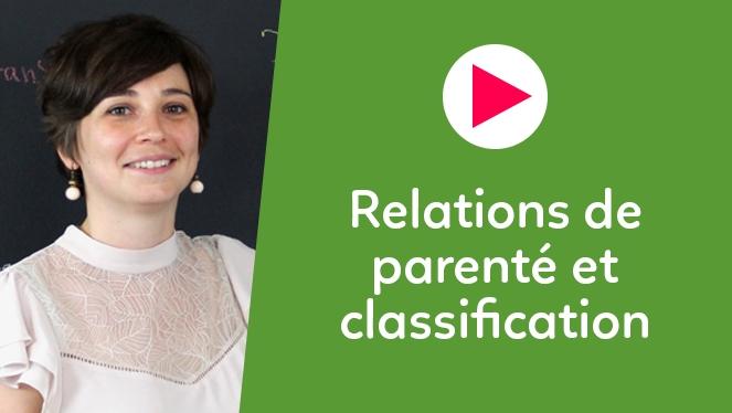 Relations de parenté et classification