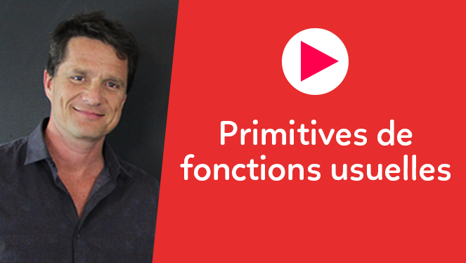 Primitives de fonctions ln, exponentielles. Décompositions