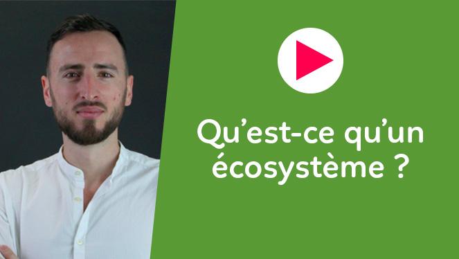 Qu'est-ce qu'un écosystème ?