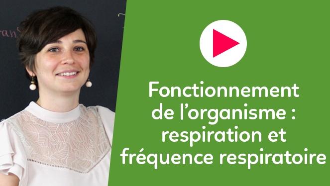 Fonctionnement de l'organisme : respiration et fréquence respiratoire