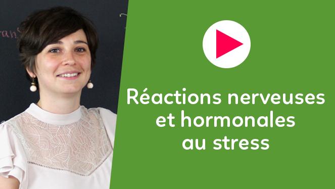 Réactions nerveuses et hormonales au stress