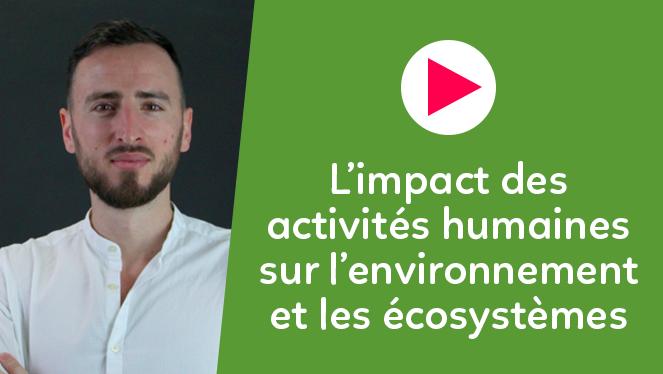 L'impact des activités humaines sur l'environnement et les écosystèmes