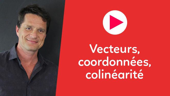Vecteurs, coordonnées, colinéarité