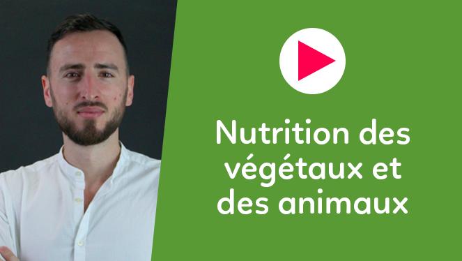 Nutrition des végétaux et des animaux