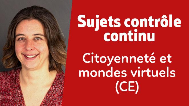 Citoyenneté et mondes virtuels (CE)