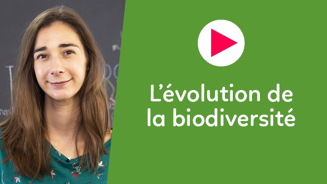 L'évolution de la biodiversité